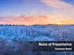 Frosty winter landscape trees forest