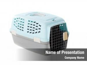 Pet carrier powerpoint background