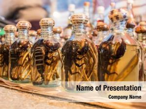 Cobra bottle alcohol scorpion