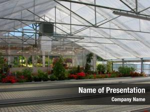 Plastic inside commercial covered horticulture