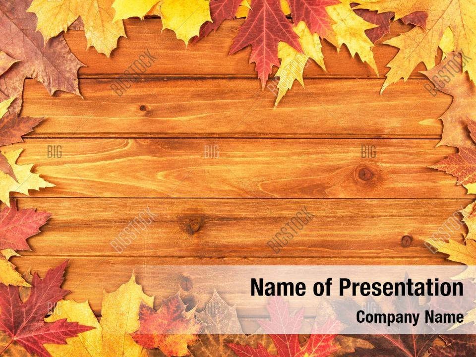 Thanksgiving Autumn Maple Leaves Powerpoint Template