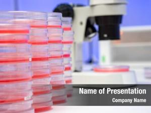Microscope PowerPoint Templates - Microscope PowerPoint