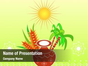 Harvest south indian festival pongal