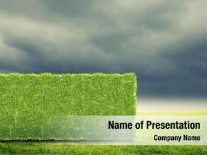 Plant conceptual green