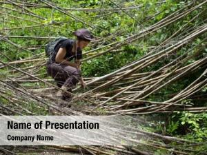 Jungle woman trekking encountering bamboo
