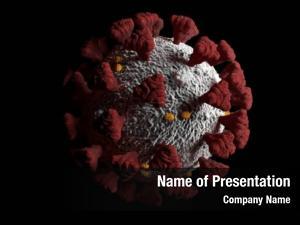 Covid 19 influenza virus