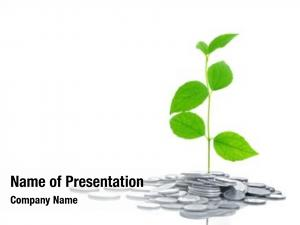 White coins plant,