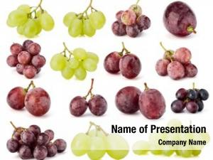 Collection grape berries white cutout