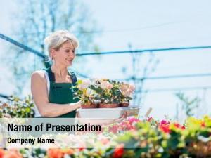 Selecting attractive gardener flowers gardening
