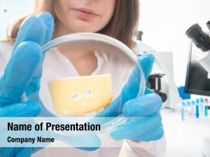 Inspection cheese quality quality control