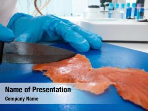 Fish inspection meat quality food