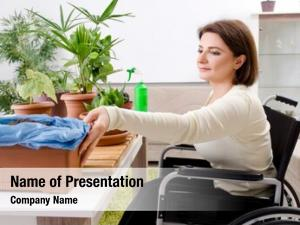 Cultivating woman wheelchair houseplants